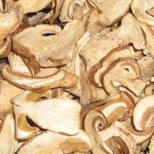 Сушеные грибы моховики