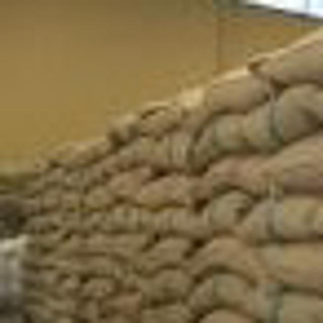 Зеленым кофе в зернах Арабика