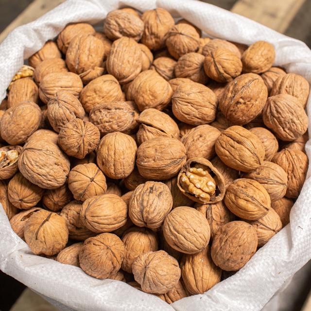 Грецкий орех в скорлупе – Чили