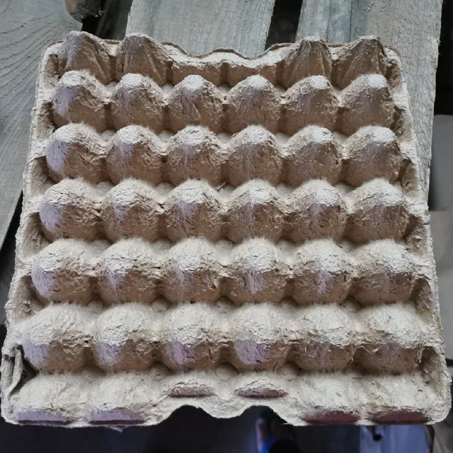 Прокладка бугорчатая под яйцо