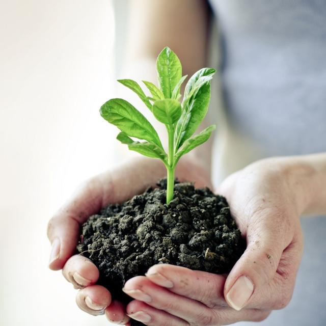 Средства защиты растений .Венгрия