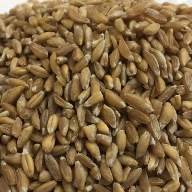 Полба Обрушенная / Emmer wheat Dehulled conventional