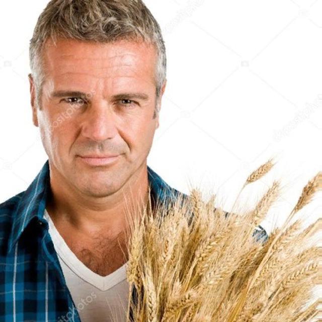 Пшеница 3,4,5 класс