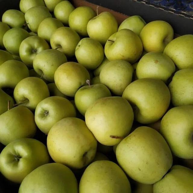 Яблоко Голден №297302