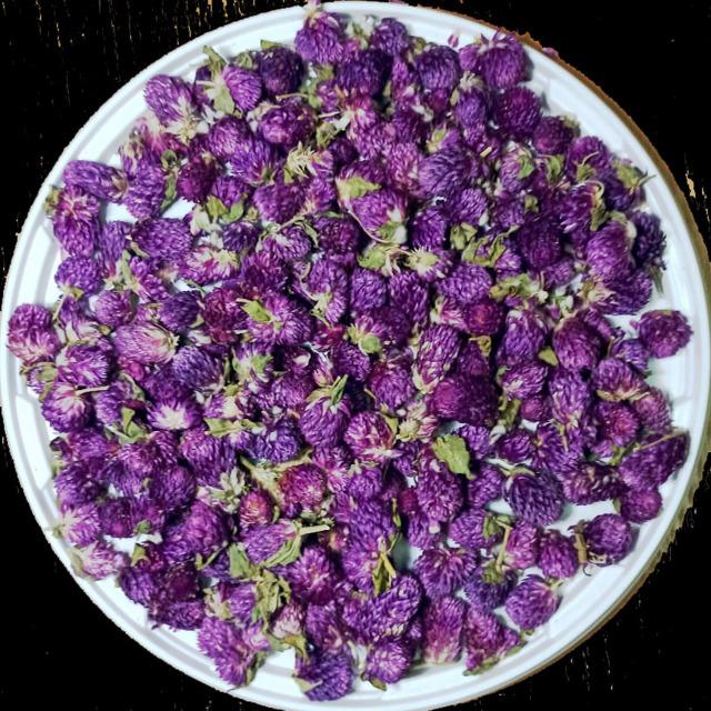 Гомфрена, цветы сушеные